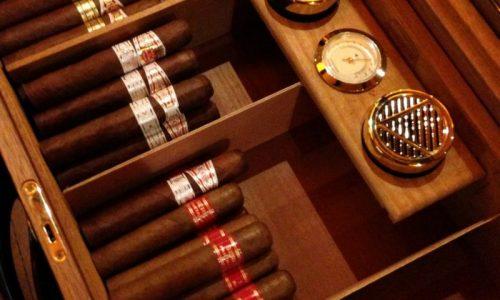 Hướng dẫn cách nuôi xì gà ngon