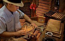 5 bí quyết chọn mua xì gà ở Hà Nội cực chuẩn