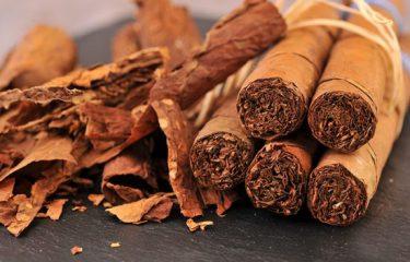 Tại sao bạn hay gặp điếu xì gà bị nứt và rách lá ngoài?