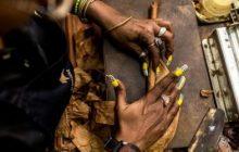 Sự ra đời và khác biệt của xì gà quấn máy