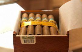 Đánh giá xì gà Siglo VI – Biểu tượng Hoàn hảo
