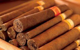 Tại sao xì gà Cuba đắt – P4